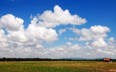 Земля многодетным семьям в Казани выделяется бесплатно